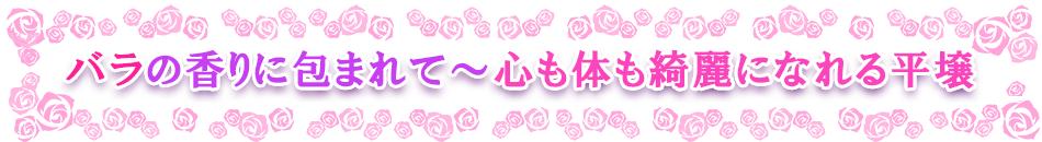 バラの香りに包まれて~心も体も綺麗になれる平壌